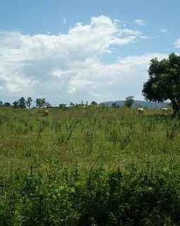 land in lukaya uganda for rent lease